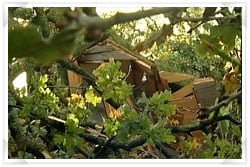 Storm damage to a garden building