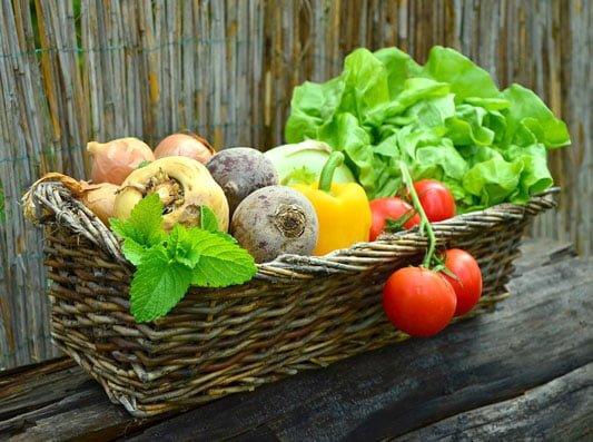 Grow your own veg