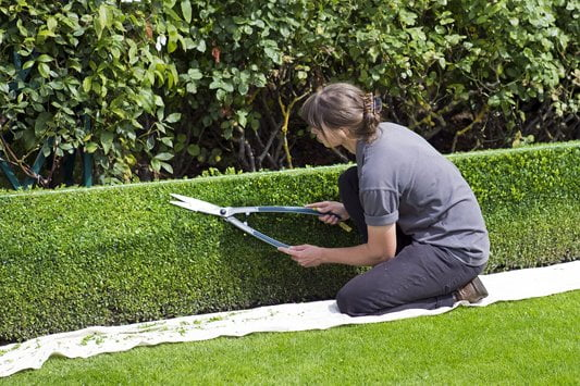 Improve garden security with structure