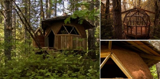 """A """"cabin"""" in the woods"""