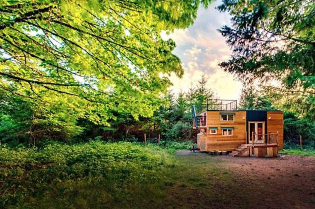 """A timber """"cabin"""" in the woods"""