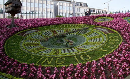 The living floral clock