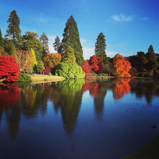 The best gardens to visit this autumn?